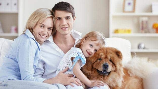 Wills & Trusts dog-young-family Direct Wills Lower Sydenham
